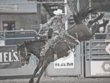 Barstowprorodeo com: Online Shopping for Rodeo Supplies