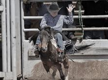 barstow pro rodeo equipment coupons
